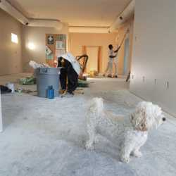 Photo of Contractor Paint Walls in The Basement